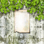 Old paper ad on ruined stone wall — Stock Photo