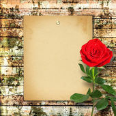 Red rose with green leaves on the wooden abstract background  — Stock Photo