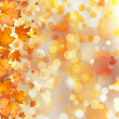 Autumnal leaves on bokeh background — Stock Photo #49276463