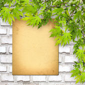 Old paper on brick wall with green foliage — 图库照片