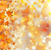 Autumnal leaves on bokeh background — Stock Photo