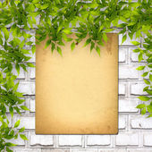 Old paper listing on white brick wall with bright green foliage — Stock Photo