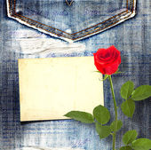 Old vintage postcard with beautiful red rose on blue jeans backg — 图库照片