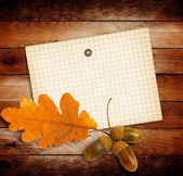 Old grunge paper with autumn oak leaves and acorns on the wooden — Foto Stock
