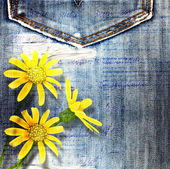 Beautiful yellow flowers on blue background old jeans — Stock Photo