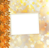 Orange autumnal branch of  tree on abstract background with boke — Foto Stock