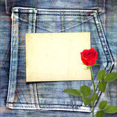 Old vintage postcard with beautiful red rose on blue jeans backg — Stock Photo