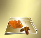 Autunno ramo quercia con ghiande su sfondo oro astratta. conce — Foto Stock