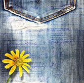 Beautiful yellow flowers on blue background old jeans — Foto Stock