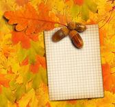Stary papier z dąb jesień liście i żołędzie na abstra — Zdjęcie stockowe