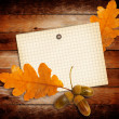 Old grunge paper with autumn oak leaves and acorns on the wooden — Stock Photo #51401163