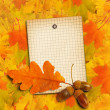 Old grunge paper with autumn oak leaves and acorns on the abstra — Stock Photo #51482659