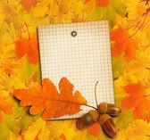 Oud grunge papier met herfst eiken bladeren en eikels op de abstra — Stockfoto