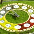 Kiev flower clock — Stock Photo #13859762