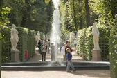 Summer Garden in Sankt Petersburg — Stock Photo