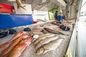 Mercado de pescado de bergen — Foto de Stock