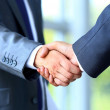 Two businessman shaking hands — Stock Photo #41649417