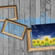 Stock Photo: Blank Frames and Picture of Flowers on Vintage Wooden Wall