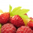 Stock Photo: Mixed Berries (Wild Strawberries and Raspberries) with Green Leaf