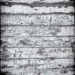 Black and White Grungy Wooden Wall — Foto Stock #12836174