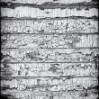 Stock Photo: Black and White Grungy Wooden Wall