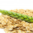 Wheat Flakes and Ear of Wheat on White Background — Stock Photo