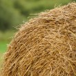 Stock Photo: Stack of Straw in the Field