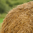 Stack of Straw in the Field — Stock Photo