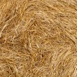 Stack of Wheat Straw — Stock Photo