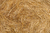 Stack of Wheat Straw — 图库照片