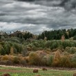 Panorama of Rural Landscape in Autumn — Stock Photo #13768586