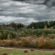 Panorama of Rural Landscape in Autumn — Stock Photo