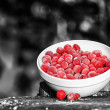 Frozen Cranberries on Tree Stump on Black and White Background — Stok fotoğraf