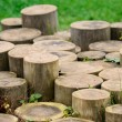 Stock Photo: Tree Stumps
