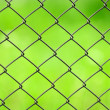 Wire Mesh Fence Close-Up on Green Background — 图库照片