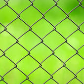Wire Mesh Fence Close-Up on Green Background — Stock Photo
