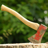 Ax (Wood Chopper) in Tree Stump — Foto Stock