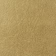 Greenish Brown (Olive) Faux Leather Texture — Stock Photo
