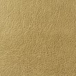 Stock Photo: Greenish Brown (Olive) Faux Leather Texture