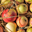 Crop of Apples with Straw — Stock Photo