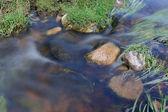 Rapid Water Stream — Stock Photo