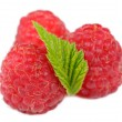 Red Raspberries with Green Leaf Isolated on White Background — Stock Photo