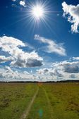 Green Grass Field in Countryside Under Midday Sun in Blue Sky with Clouds — Stock Photo