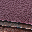 Stock Photo: Artificial Leather Swatches