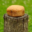 Homemade Bread on Tree Stump — Stock Photo