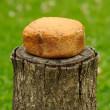Homemade Bread on Tree Stump — Foto Stock