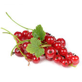 Red Currants with Green Leaves Isolated on White Background — Stock Photo