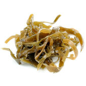 Laminaria (Kelp) Seaweed Close-Up Isolated on White Background — Stock Photo