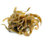 Laminaria (Kelp) Seaweed Close-Up Isolated on White Background — Stock Photo