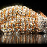 Shiny Gold Bracelet and Ring on Black Background — Stock Photo #45760491